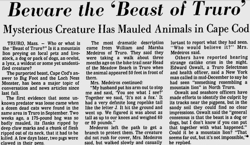 beast of truro newspaper article